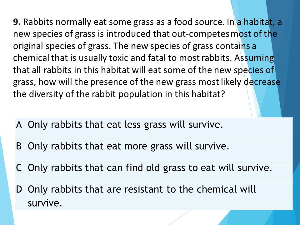 AOnly rabbits that eat less grass will survive. BOnly rabbits that eat more grass will survive. COnly rabbits that can find old grass to eat will surv