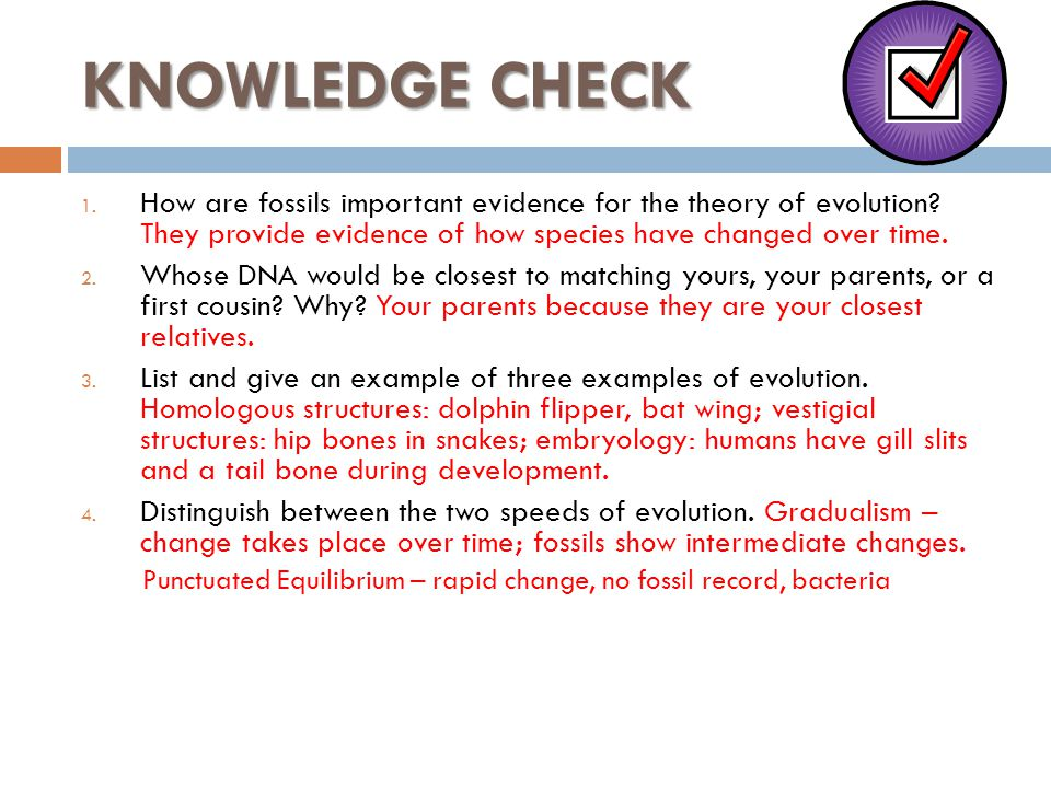 KNOWLEDGE CHECK 1. How are fossils important evidence for the theory of evolution? They provide evidence of how species have changed over time. 2. Who