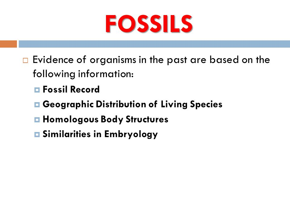 FOSSILS  Evidence of organisms in the past are based on the following information:  Fossil Record  Geographic Distribution of Living Species  Homo