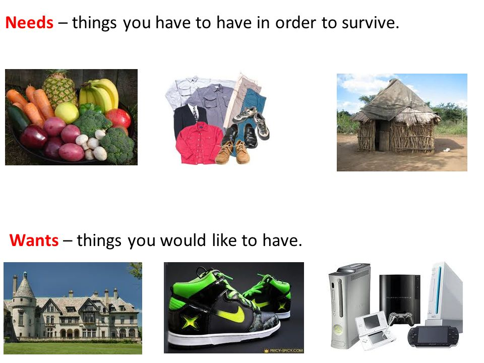 Needs – things you have to have in order to survive. Wants – things you would like to have.