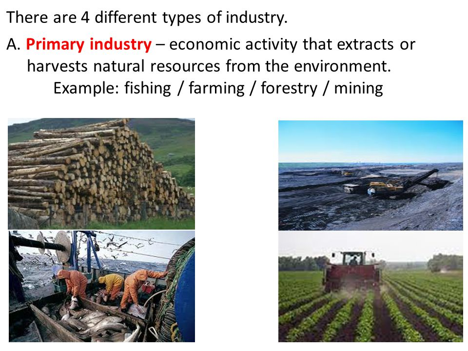 There are 4 different types of industry. A. Primary industry – economic activity that extracts or harvests natural resources from the environment. Exa