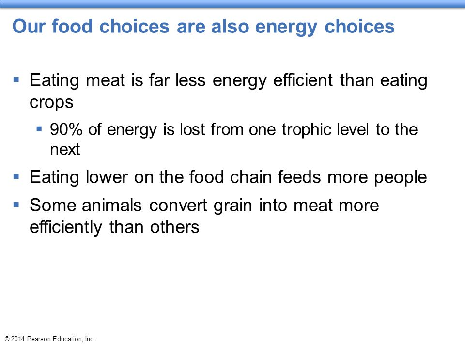 Our food choices are also energy choices  Eating meat is far less energy efficient than eating crops  90% of energy is lost from one trophic level to the next  Eating lower on the food chain feeds more people  Some animals convert grain into meat more efficiently than others