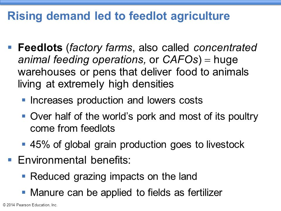 Rising demand led to feedlot agriculture  Feedlots (factory farms, also called concentrated animal feeding operations, or CAFOs)  huge warehouses or
