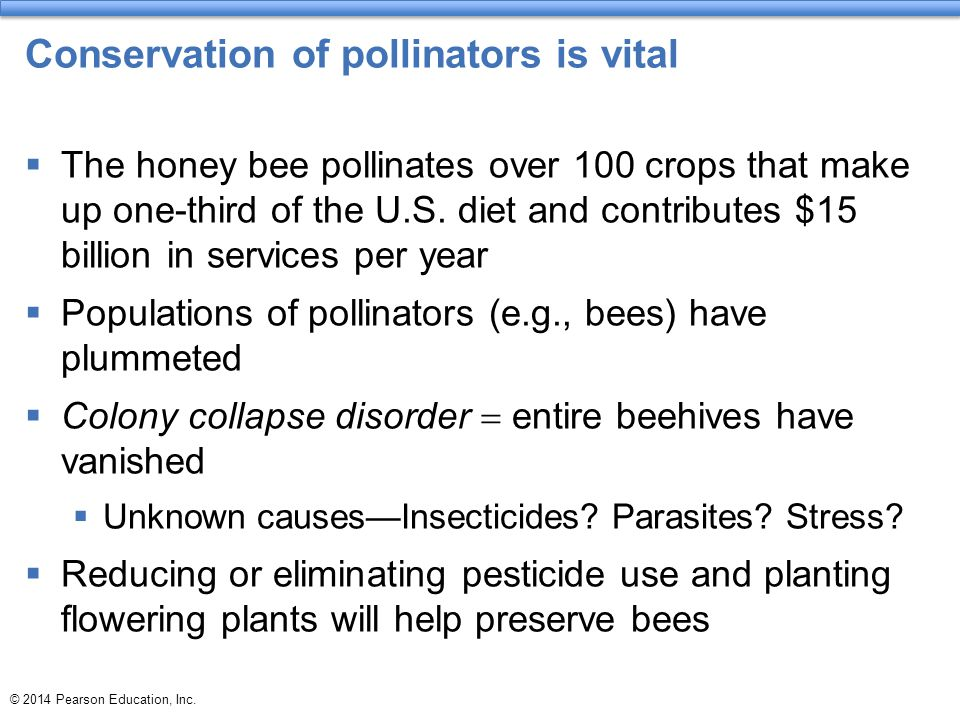 Conservation of pollinators is vital  The honey bee pollinates over 100 crops that make up one-third of the U.S. diet and contributes $15 billion in
