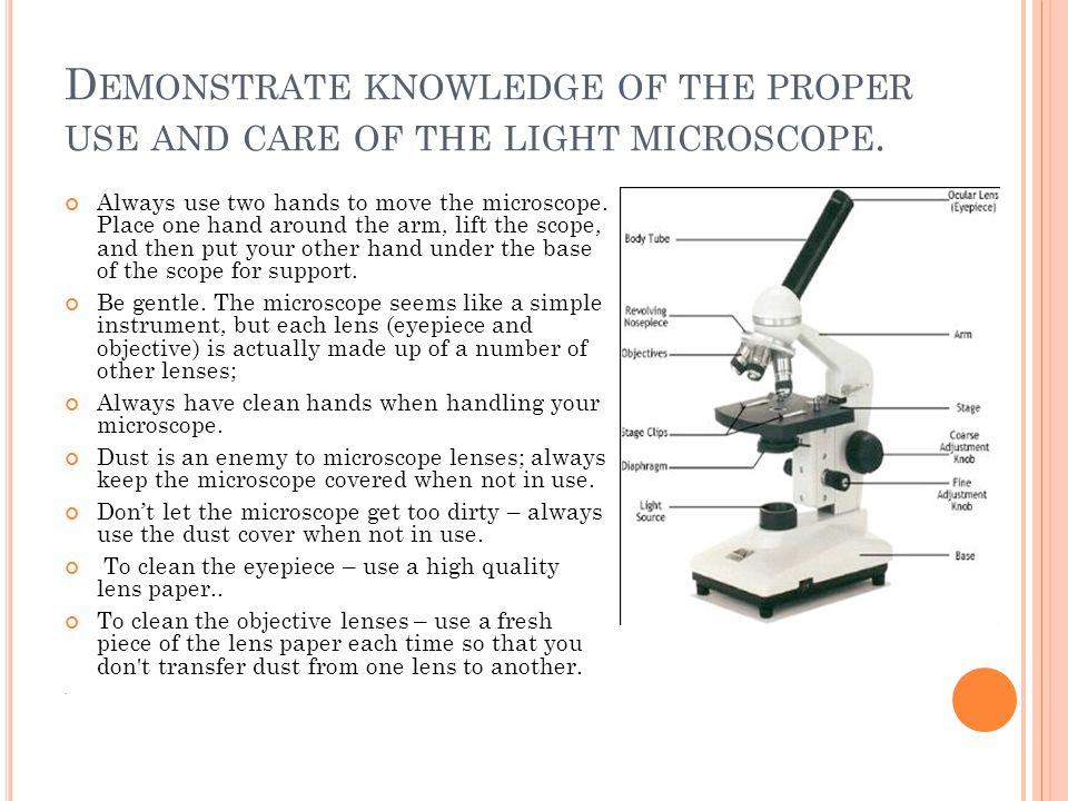D EMONSTRATE KNOWLEDGE OF THE PROPER USE AND CARE OF THE LIGHT MICROSCOPE. Always use two hands to move the microscope. Place one hand around the arm,
