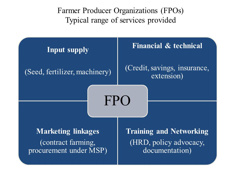 Input supply (Seed, fertilizer, machinery) Financial & technical (Credit, savings, insurance, extension) Marketing linkages (contract farming, procure
