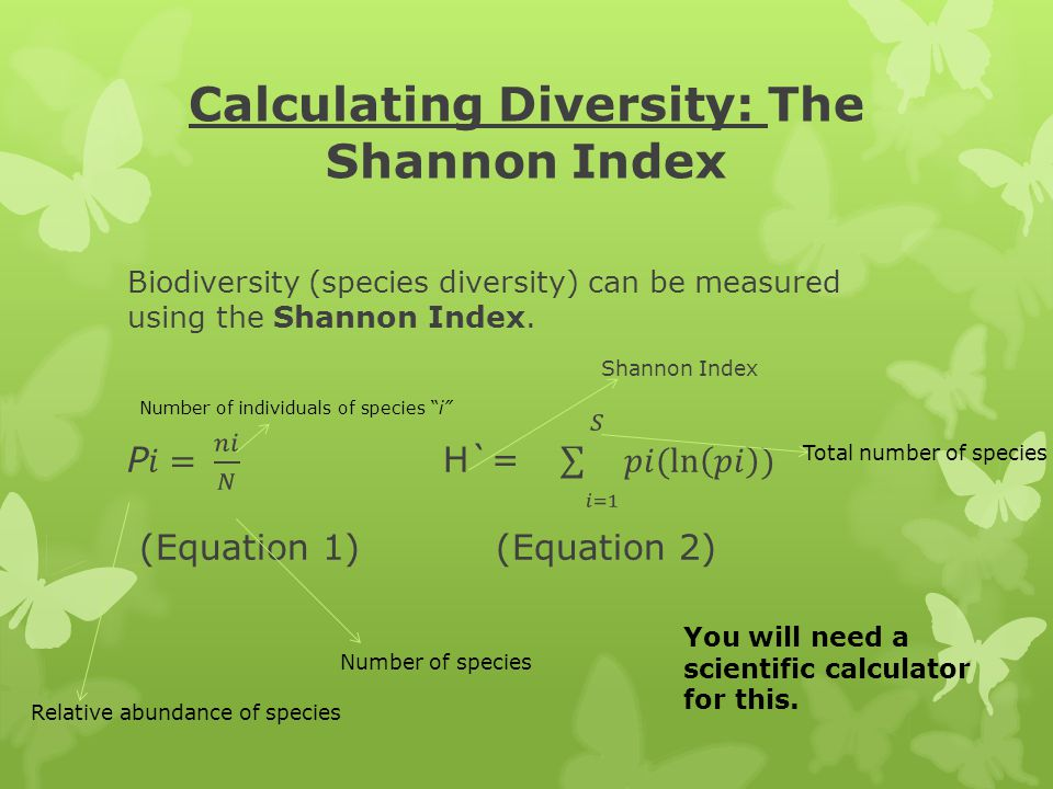 """Calculating Diversity: The Shannon Index Relative abundance of species Number of species Number of individuals of species """"i"""" Total number of species"""