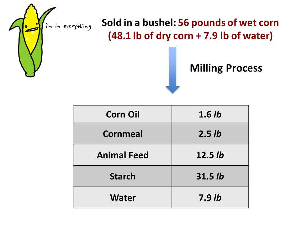 Sold in a bushel: 56 pounds of wet corn (48.1 lb of dry corn + 7.9 lb of water) Milling Process Corn Oil1.6 lb Cornmeal2.5 lb Animal Feed12.5 lb Starch31.5 lb Water7.9 lb