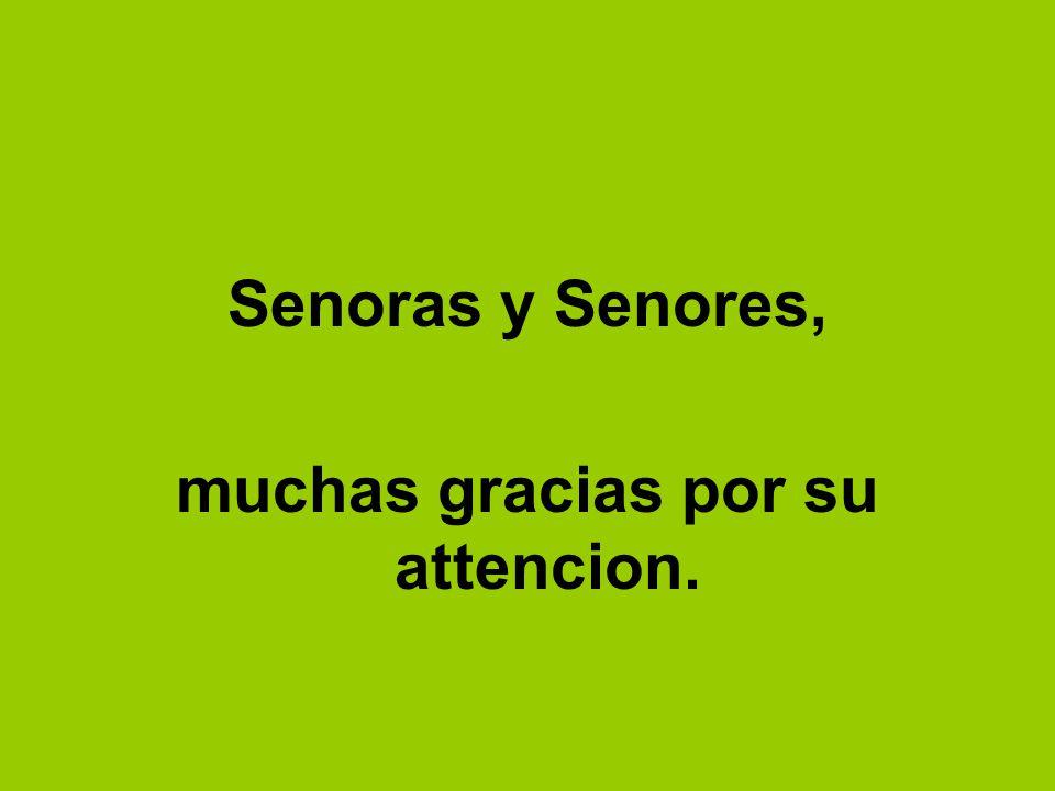 Senoras y Senores, muchas gracias por su attencion.