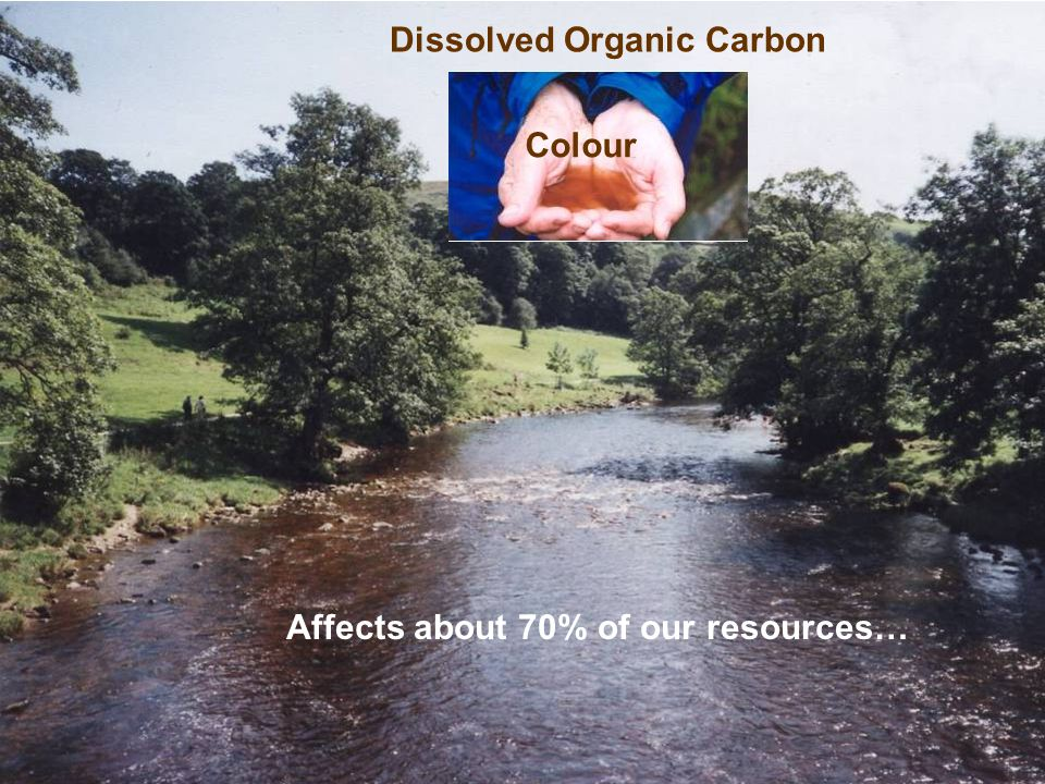 Dissolved Organic Carbon Affects about 70% of our resources… Colour