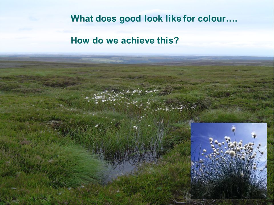 What does good look like for colour…. How do we achieve this?