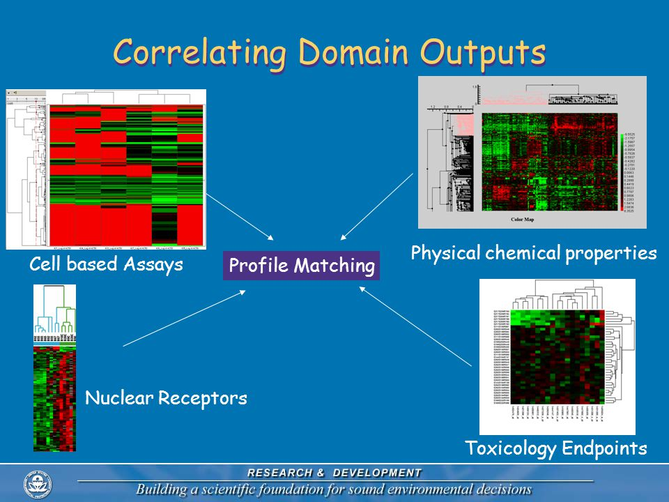 Correlating Domain Outputs Cell based Assays Nuclear Receptors Toxicology Endpoints Physical chemical properties Profile Matching