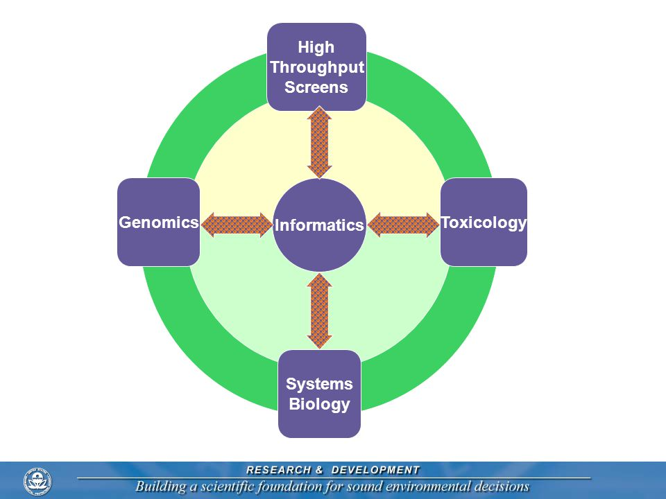 ToxicologyGenomics Systems Biology Informatics High Throughput Screens 8