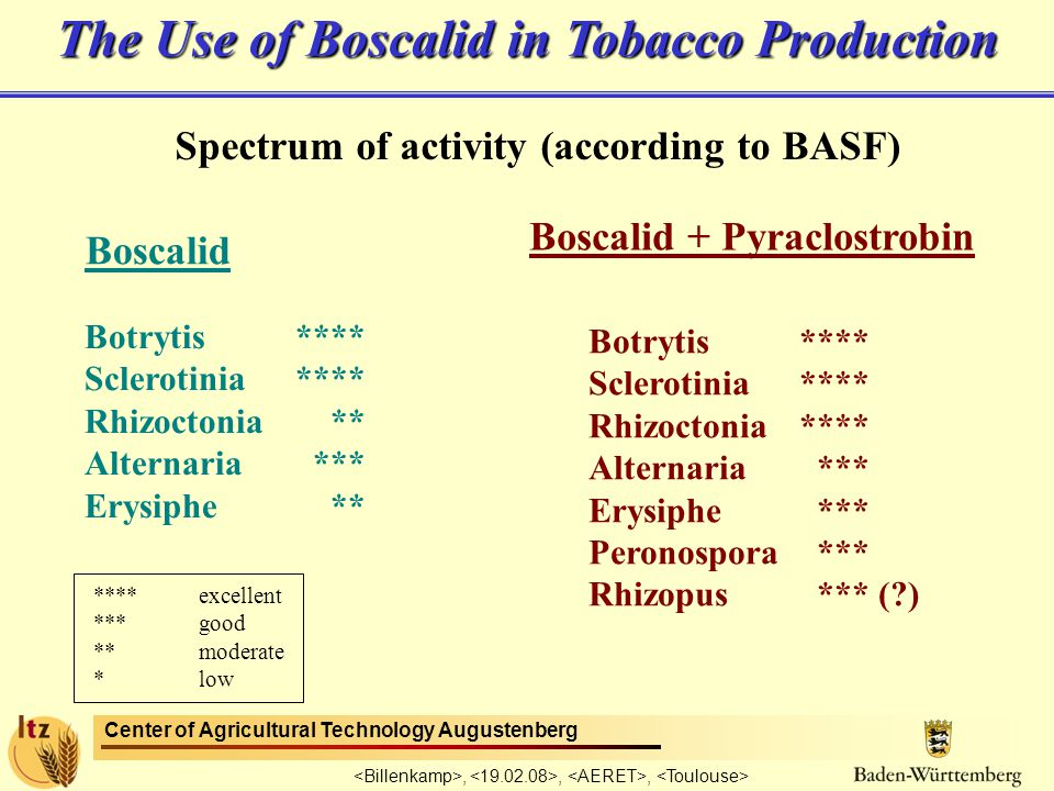 Center of Agricultural Technology Augustenberg,,, The Use of Boscalid in Tobacco Production Spectrum of activity (according to BASF) Boscalid Boscalid + Pyraclostrobin Botrytis**** Sclerotinia**** Rhizoctonia ** Alternaria *** Erysiphe ** Botrytis**** Sclerotinia**** Rhizoctonia**** Alternaria *** Erysiphe *** Peronospora *** Rhizopus *** ( ) ****excellent ***good **moderate *low