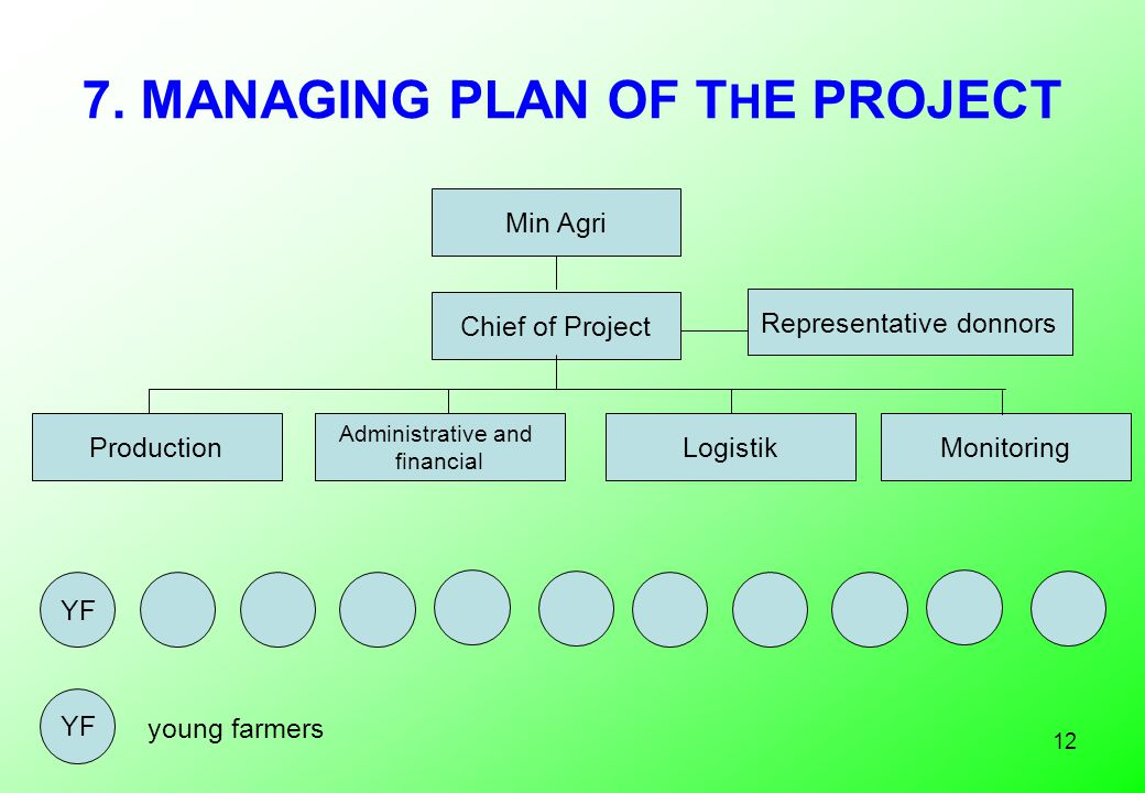 12 7. MANAGING PLAN OF T H E PROJECT Min Agri Chief of Project Production Administrative and financial LogistikMonitoring YF young farmers Representat