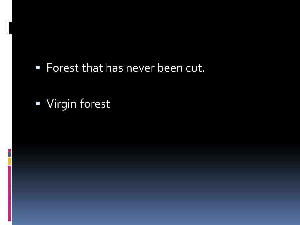  Forest that has never been cut.  Virgin forest