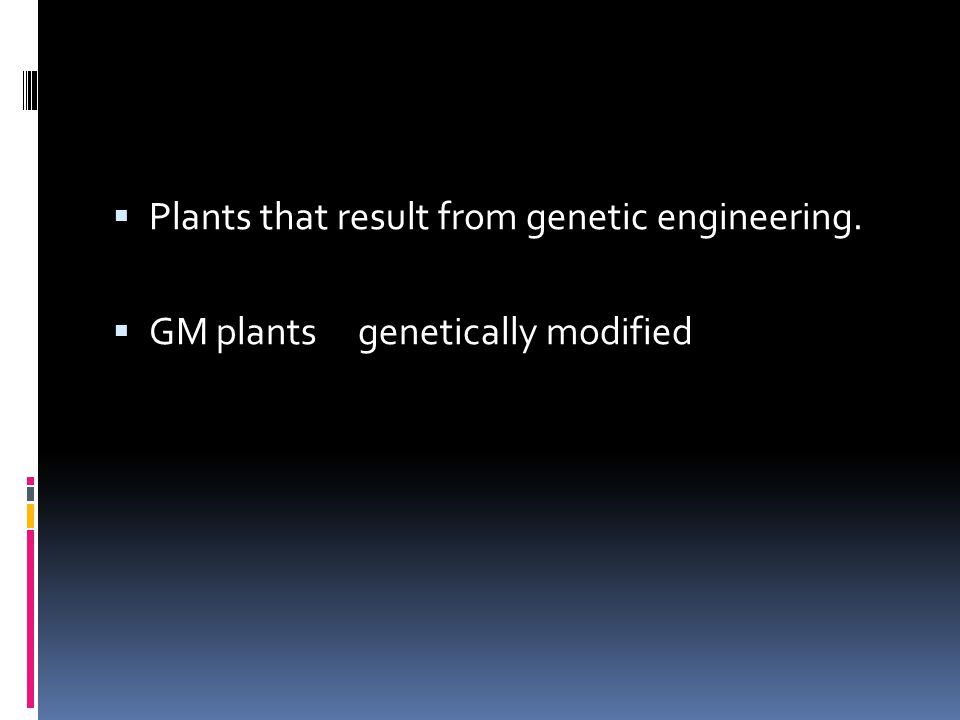  Plants that result from genetic engineering.  GM plants genetically modified