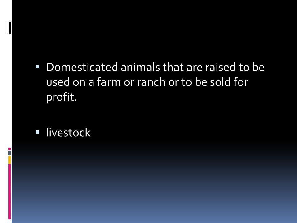  Domesticated animals that are raised to be used on a farm or ranch or to be sold for profit.  livestock