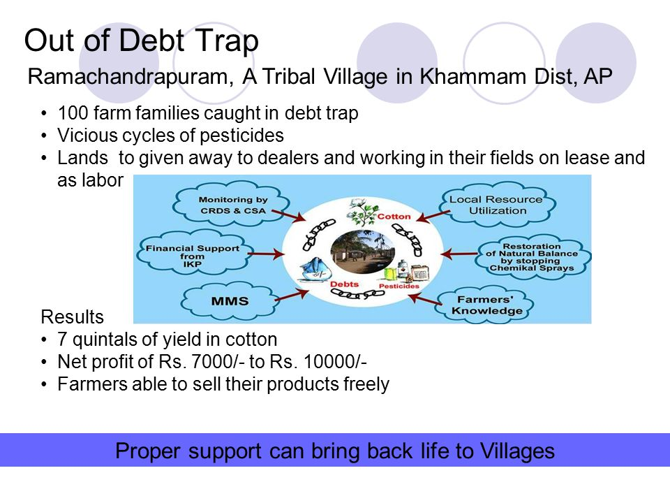 Out of Debt Trap Ramachandrapuram, A Tribal Village in Khammam Dist, AP 100 farm families caught in debt trap Vicious cycles of pesticides Lands to gi