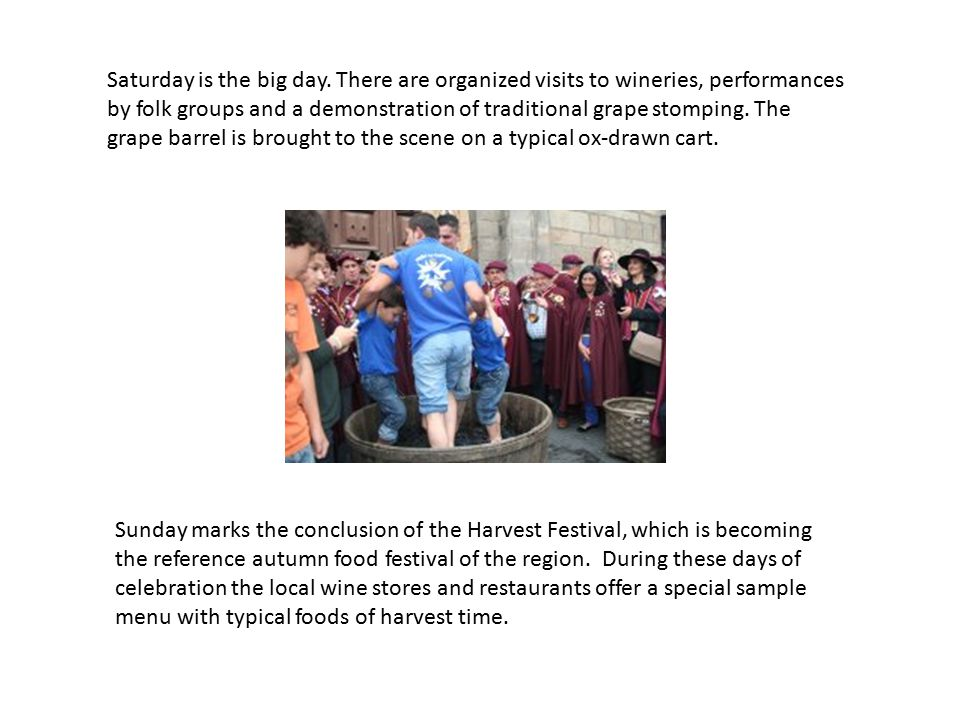 Saturday is the big day. There are organized visits to wineries, performances by folk groups and a demonstration of traditional grape stomping. The gr