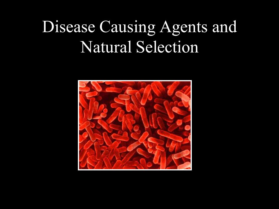 Disease Causing Agents and Natural Selection