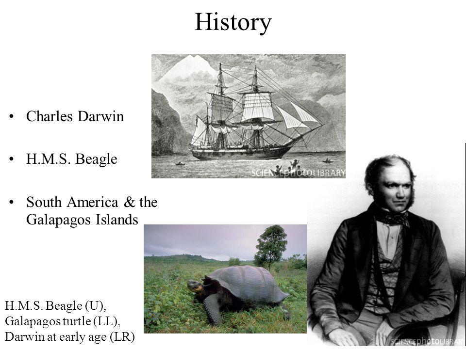 History Charles Darwin H.M.S. Beagle South America & the Galapagos Islands H.M.S. Beagle (U), Galapagos turtle (LL), Darwin at early age (LR)