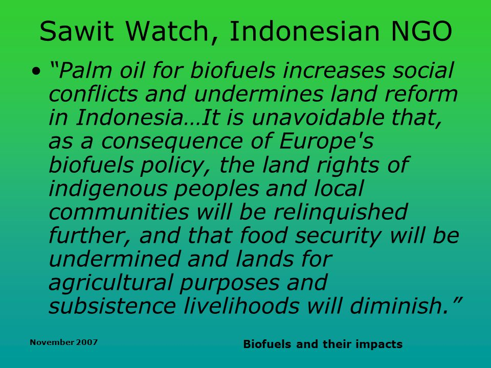 November 2007 Biofuels and their impacts Sawit Watch, Indonesian NGO Palm oil for biofuels increases social conflicts and undermines land reform in Indonesia…It is unavoidable that, as a consequence of Europe s biofuels policy, the land rights of indigenous peoples and local communities will be relinquished further, and that food security will be undermined and lands for agricultural purposes and subsistence livelihoods will diminish.