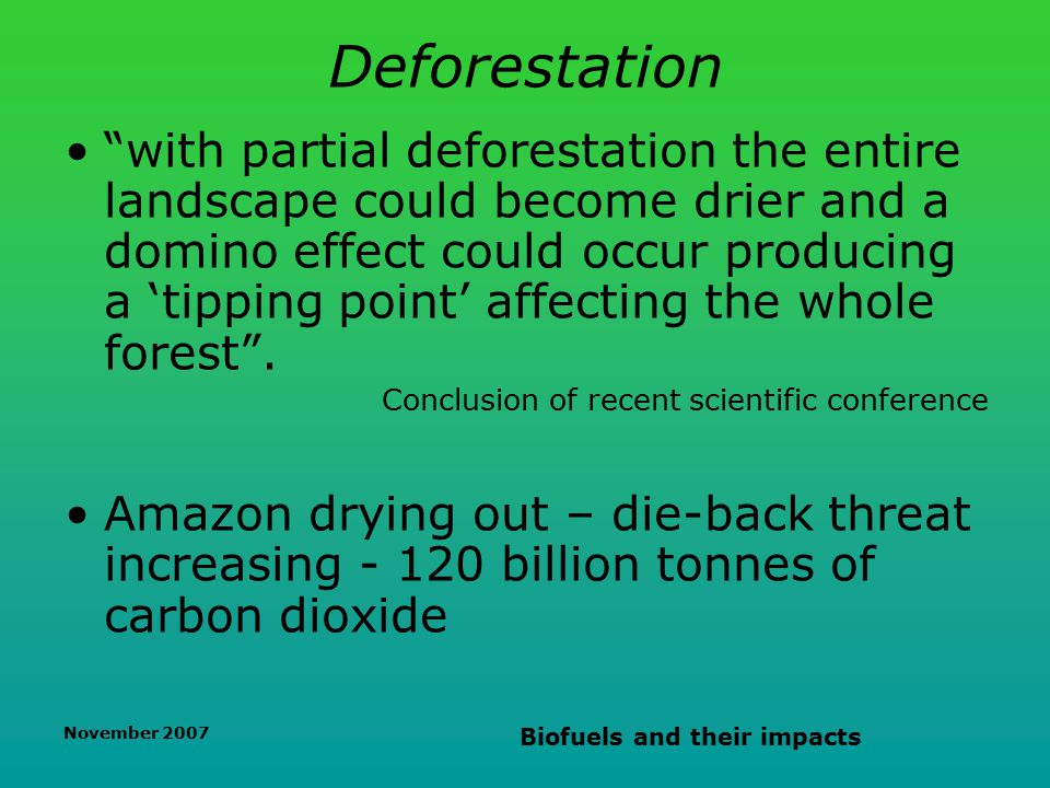 November 2007 Biofuels and their impacts Deforestation with partial deforestation the entire landscape could become drier and a domino effect could occur producing a 'tipping point' affecting the whole forest .