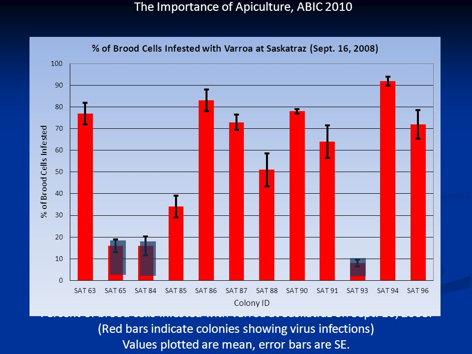 The Importance of Apiculture, ABIC 2010 Percent of brood cells infested with varroa at Saskatraz on Sept.