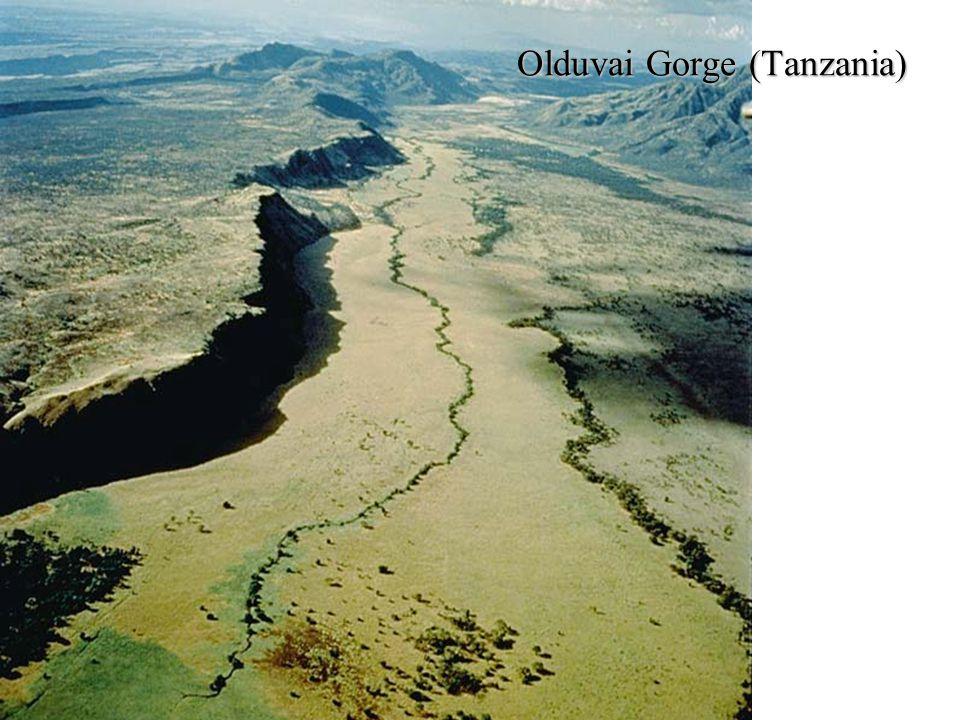 Olduvai Gorge (Tanzania)