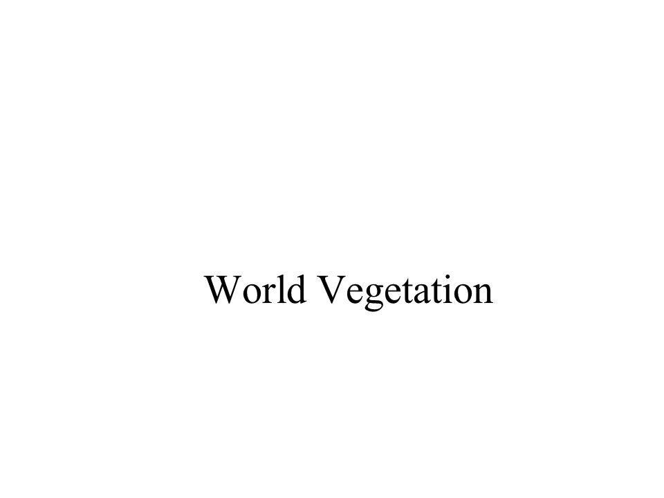 World Vegetation