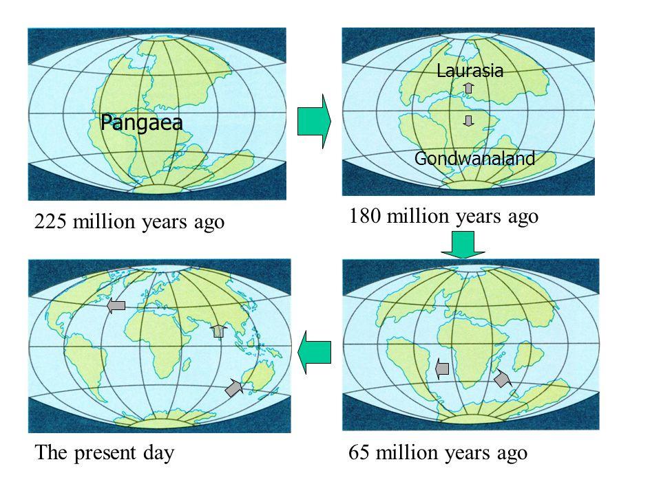 Pangaea 225 million years ago Laurasia Gondwanaland 180 million years ago The present day65 million years ago
