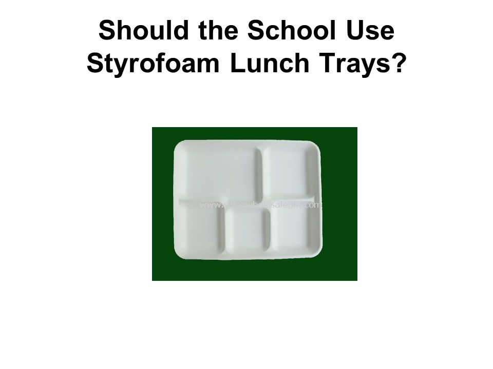 Should the School Use Styrofoam Lunch Trays?