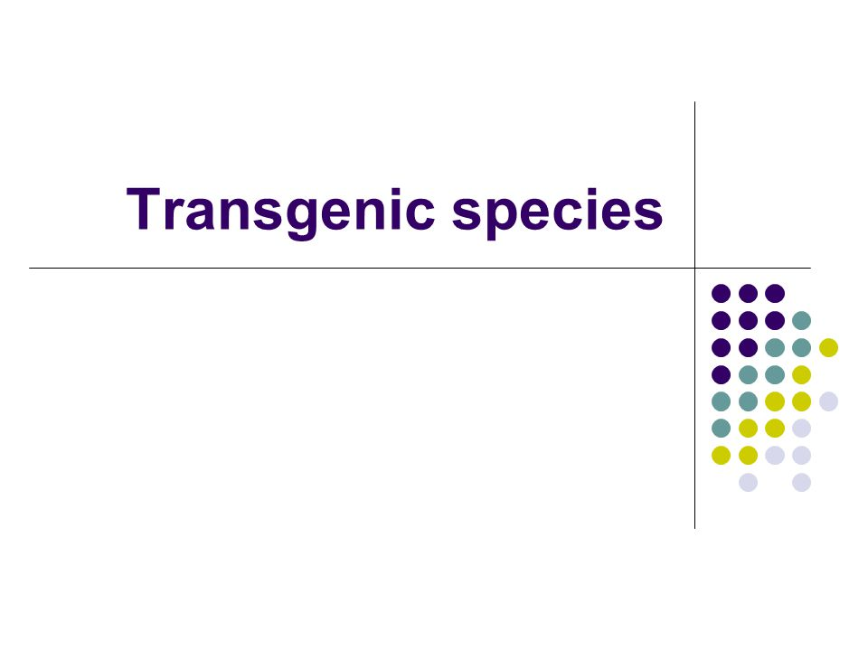 Transgenic species