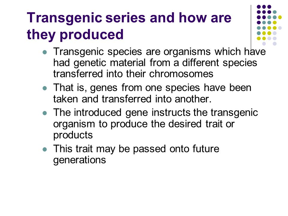 Transgenic series and how are they produced Transgenic species are organisms which have had genetic material from a different species transferred into