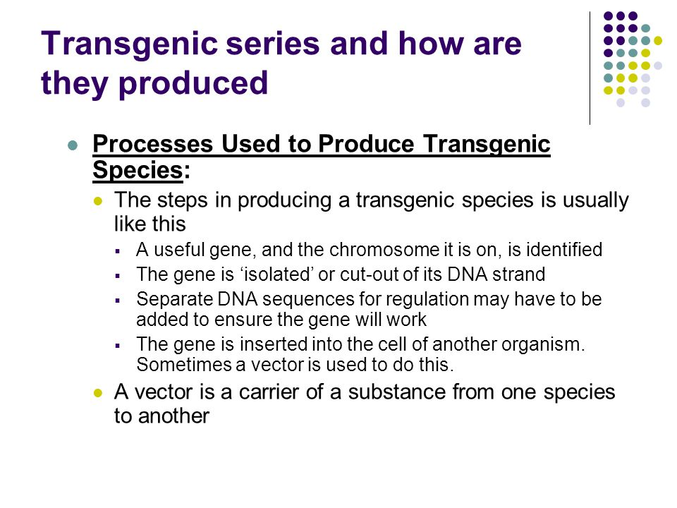 Transgenic series and how are they produced Processes Used to Produce Transgenic Species: The steps in producing a transgenic species is usually like