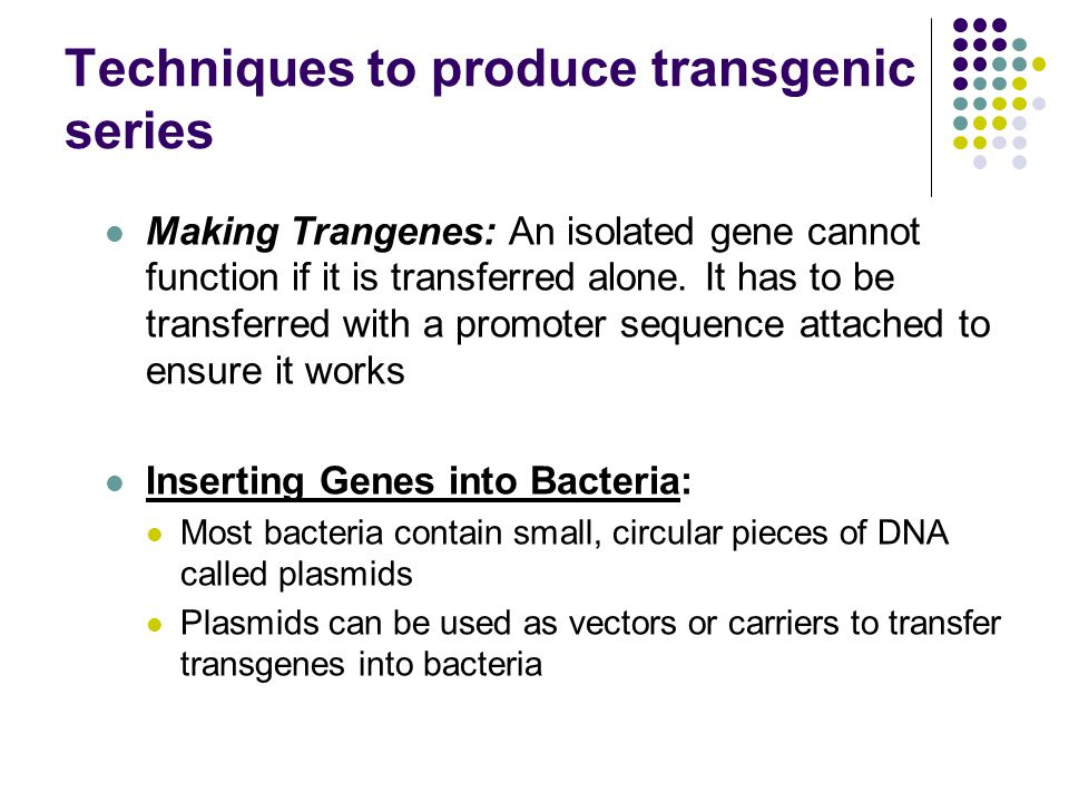 Techniques to produce transgenic series Making Trangenes: An isolated gene cannot function if it is transferred alone. It has to be transferred with a