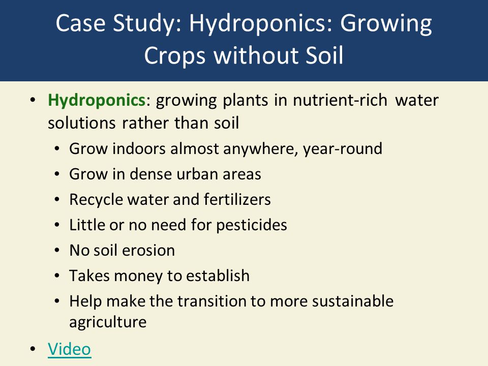 Case Study: Hydroponics: Growing Crops without Soil Hydroponics: growing plants in nutrient-rich water solutions rather than soil Grow indoors almost