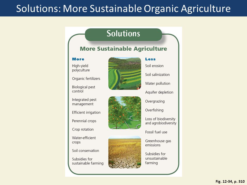 Solutions: More Sustainable Organic Agriculture Fig. 12-34, p. 310