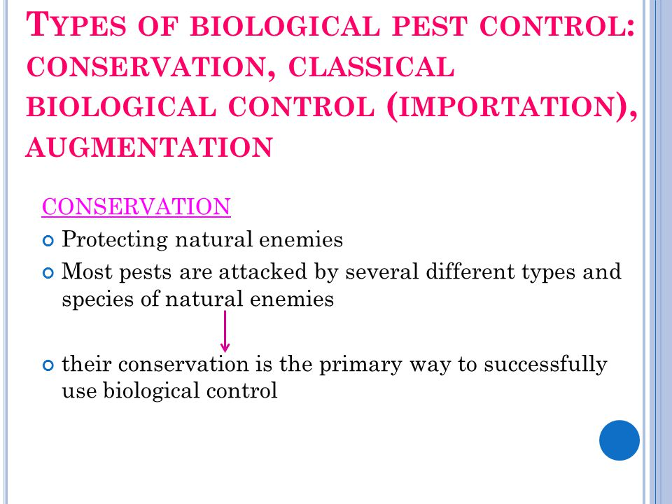 T YPES OF BIOLOGICAL PEST CONTROL : CONSERVATION, CLASSICAL BIOLOGICAL CONTROL ( IMPORTATION ), AUGMENTATION CONSERVATION Protecting natural enemies M