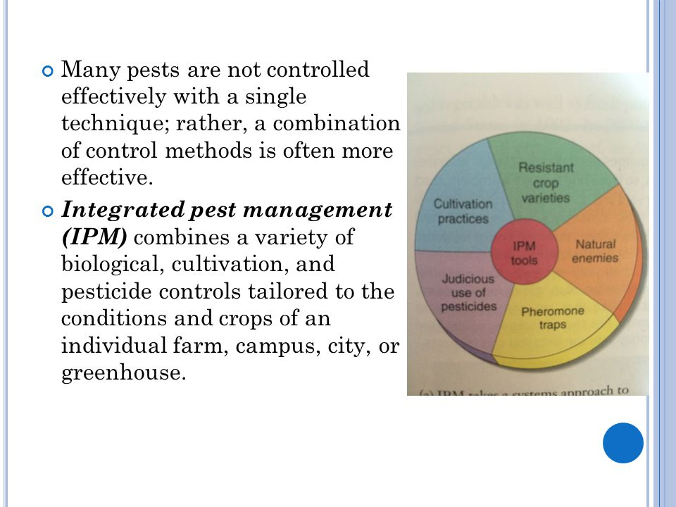 Many pests are not controlled effectively with a single technique; rather, a combination of control methods is often more effective. Integrated pest m