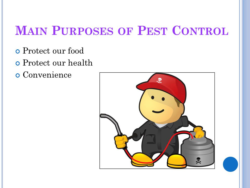 M AIN P URPOSES OF P EST C ONTROL Protect our food Protect our health Convenience