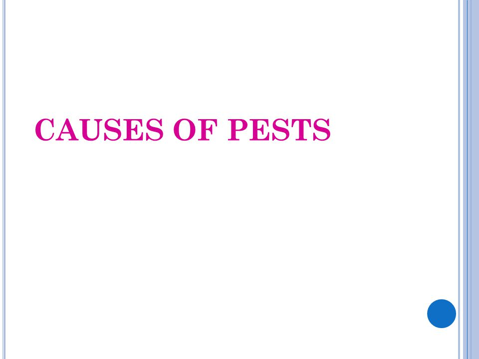 CAUSES OF PESTS