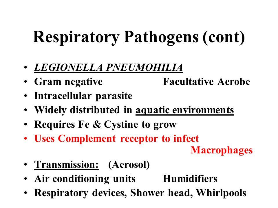 Respiratory Pathogens (cont) LEGIONELLA PNEUMOHILIA Gram negativeFacultative Aerobe Intracellular parasite Widely distributed in aquatic environments