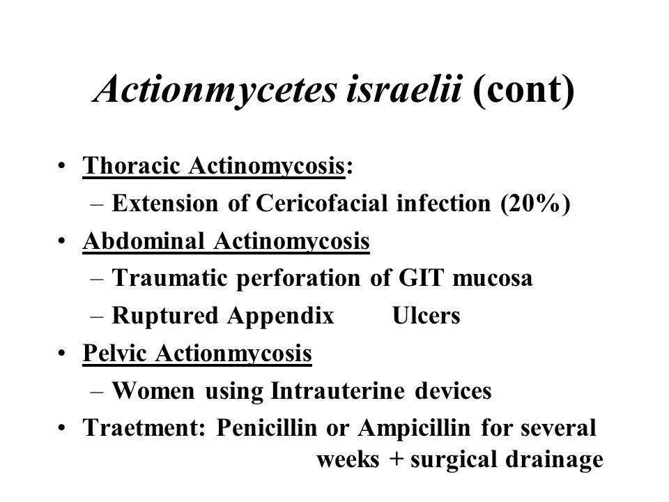Actionmycetes israelii (cont) Thoracic Actinomycosis: –Extension of Cericofacial infection (20%) Abdominal Actinomycosis –Traumatic perforation of GIT