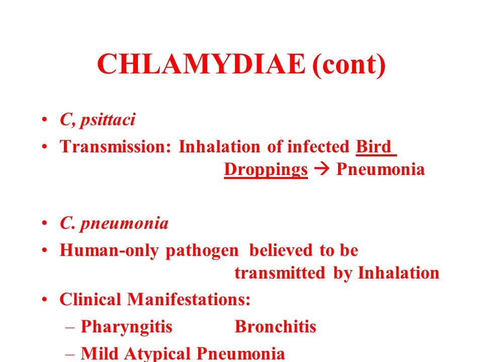 CHLAMYDIAE (cont) C, psittaci Transmission: Inhalation of infected Bird Droppings  Pneumonia C. pneumonia Human-only pathogen believed to be transmit