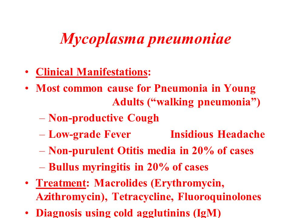 """Mycoplasma pneumoniae Clinical Manifestations: Most common cause for Pneumonia in Young Adults (""""walking pneumonia"""") –Non-productive Cough –Low-grade"""