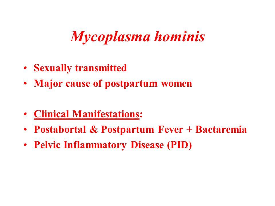 Mycoplasma hominis Sexually transmitted Major cause of postpartum women Clinical Manifestations: Postabortal & Postpartum Fever + Bactaremia Pelvic In