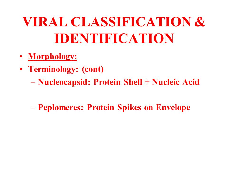 VIRAL CLASSIFICATION & IDENTIFICATION Morphology: Terminology: (cont) –Nucleocapsid: Protein Shell + Nucleic Acid –Peplomeres: Protein Spikes on Envel
