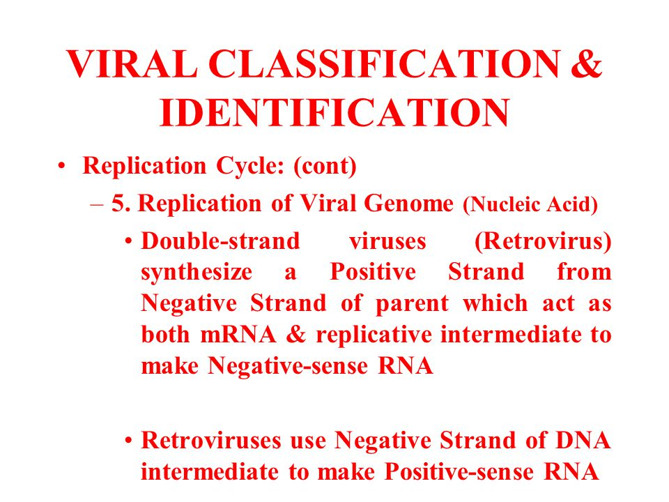 VIRAL CLASSIFICATION & IDENTIFICATION Replication Cycle: (cont) –5. Replication of Viral Genome (Nucleic Acid) Double-strand viruses (Retrovirus) synt